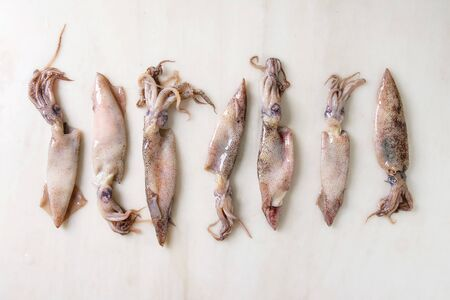 Raw uncooked squids calamari in row over white marble background. Flat lay, space