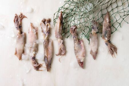 Raw uncooked squids calamari in row with ice, lemon and fishing nets over white marble background. Flat lay, space