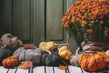 Wool and textile pumpkins for Halloween or Thanksgiving holidays home decor with autumn leaves, pot of chrysanthemums flowers on knitted doormat with old wooden door at background.