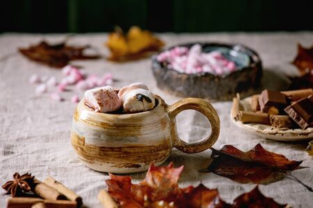 Hot chocolate or cocoa with marshmallow served in ceramic mug with saucer, cinnamon sticks, chopped chocolate, pink sugar, jug of cream and yellow autumn leaves on grey table cloth. 写真素材