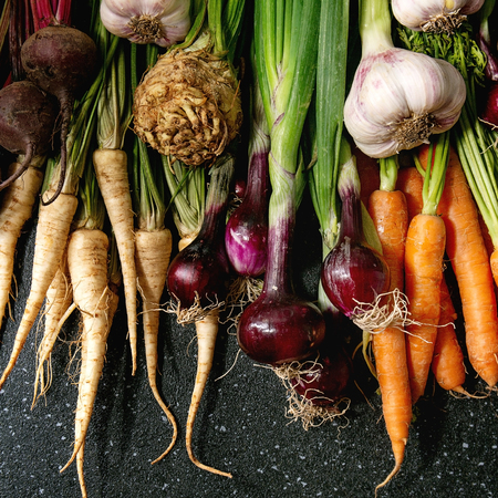 Variety of root garden vegetables carrot, garlic, purple onion, beetroot, parsnip and celery with tops over black texture background. Flat lay, space