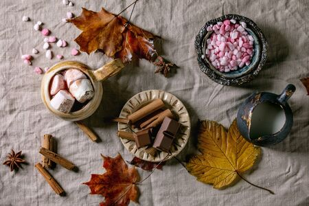 Hot chocolate or cocoa with marshmallow served in ceramic mug with saucer, cinnamon sticks, chopped chocolate, pink sugar and yellow autumn leaves on grey table cloth as background. Flat lay, space