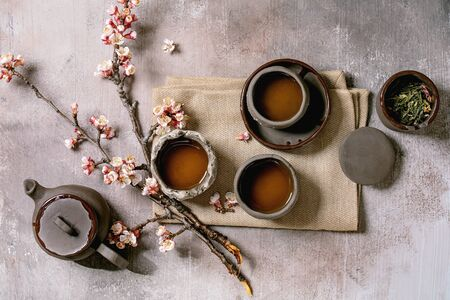Tea drinking wabi sabi japanese style dark clay cups and teapot on cloth napkin with blooming cherry branches. Grey texture concrete background. Flat lay, space