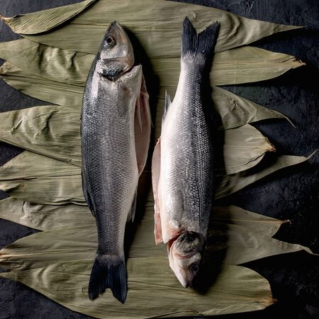 Two raw fresh uncooked fish sea basses on dry bamboo leaves ready to cook over dark texture concrete background. Flat lay, space