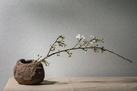 Blossom cherry branches in craft clay vase on grey table cloth. Spring interior decorations. 版權商用圖片