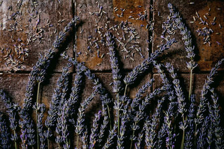 Fresh and dry lavender flowers over dark brown ceramic tile. Flat lay, space 版權商用圖片 - 151865862
