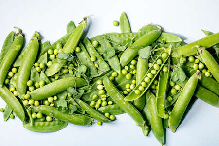 Heap of young sweet organic green pea in pods with sprouts over grey background. Flat lay, copy space 版權商用圖片 - 151694183