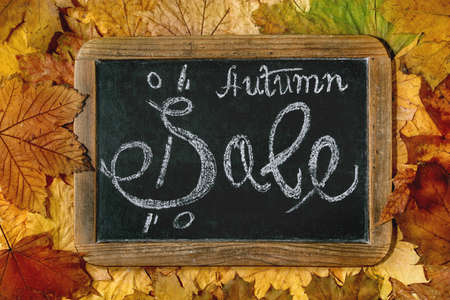 Autumn sale concept. Vintage chalkboard with hand written lettering Sale over variety of colorful autumn leaves. Flat lay. 版權商用圖片