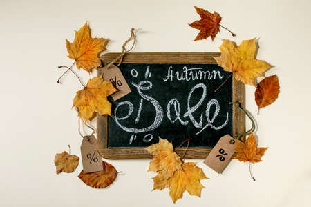 Autumn sale concept. Vintage chalkboard with hand written lettering Sale, labels with percents, yellow autumn leaves over beige background. Flat lay. 版權商用圖片