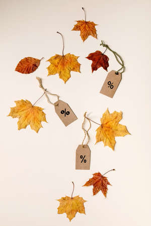 Autumn sale concept. Cardboard labels with percents, variety of yellow autumn leaves over beige background. Flat lay. 版權商用圖片