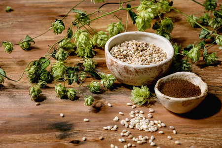 All for brewing. Fresh green hop cones, wheat grain and red fermented malt in ceramic bowls over wooden background.