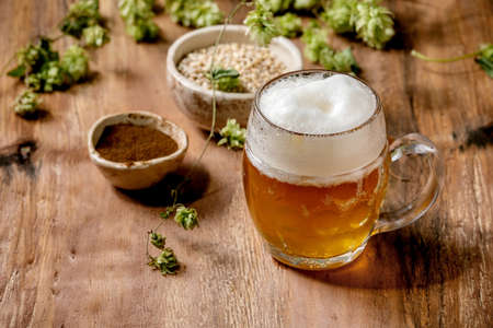 Classic glass mug of fresh cold foamy lager beer with green hop cones, wheat grain and red fermented malt in ceramic bowls behind over wooden texture background. Copy space Stock Photo
