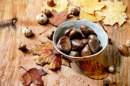 Raw edible chestnuts in ceramic bowl and yellow autumn maple leaves over wooden texture background