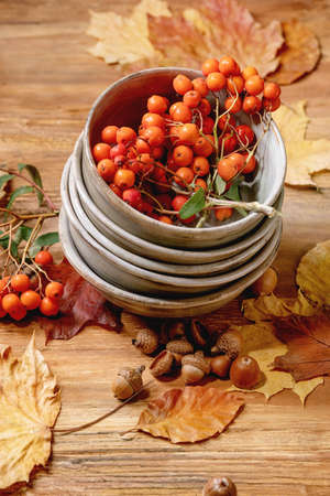 Autumn fall seasonal composition with stack of ceramic bowls, yellow maple leaves, rowan berries, chestnuts and decorative pumpkins over wooden texture background.