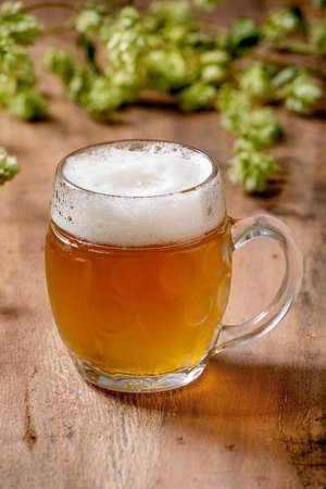 Classic glass mug of fresh cold foamy lager beer with green hop cones behind over wooden texture background. Copy space Stock Photo