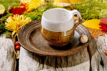 Autumn holidays table setting. Empty craft ceramic plate and mug on old wooden table decorated by fall yellow leaves, autumn berries, moss and flowers. Stock Photo