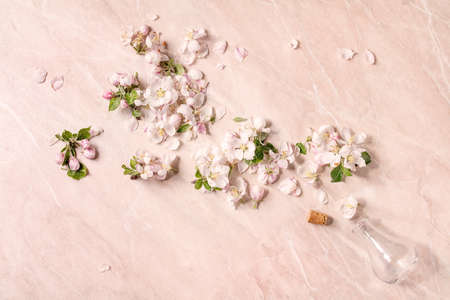 Flat lay of spring apple blooming flowers and petals from empty glass bottle over pink marble background. Perfume floral scent concept. Copy space Stok Fotoğraf