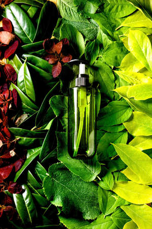 Empty green plastic bottle for soap on background made of green red leaves, green gradient. Eco friendly cosmetic product presentation. Place for label. Copy space. Nature creative layout, top view.