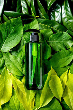 Empty green plastic bottle for soap on background made of green leaves, green gradient. Eco friendly cosmetic product presentation. Place for label. Copy space. Nature creative layout, flat lay. 版權商用圖片