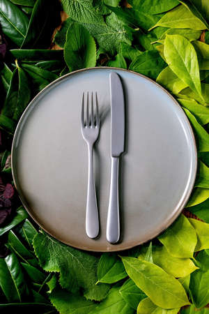 Empty ceramic plate with knife and fork on background made of green leaves, green gradient. Empty place for product. Summer menu eco food concept. Nature creative layout, Top view, flat lay