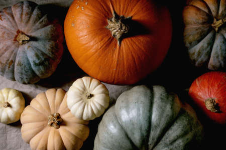 Colorful pumpkins collection different size and cultivars on linen tablecloth. Flat lay. Autumn harvest.