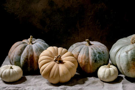 Colorful pumpkins collection different size and cultivars on linen tablecloth. Dark still life. Autumn harvest.