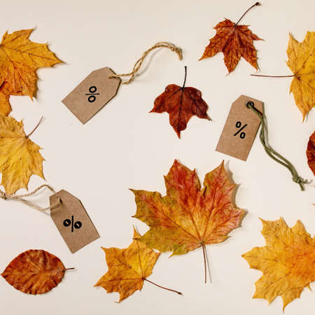 Autumn sale concept. Cardboard labels with percents, variety of yellow autumn leaves over beige background. Flat lay. Square 版權商用圖片