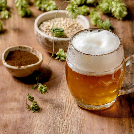 Classic glass mug of fresh cold foamy lager beer with green hop cones, wheat grain and red fermented malt in ceramic bowls behind over wooden texture background. Copy space. Square