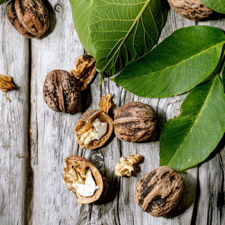 Organic walnuts, whole and broken, with green leaves of walnut tree over old wooden background. Flat lay, space. Square