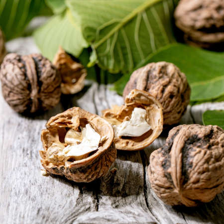 Organic walnuts, whole and broken, with green leaves of walnut tree over old wooden background. Close up. Square 版權商用圖片