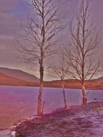Naturlandschaft Standard-Bild - 87158082