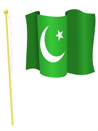 flag of pakistan: Vector illustration of the flag Pakistan Illustration