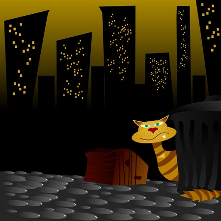 Cat in night street Vector