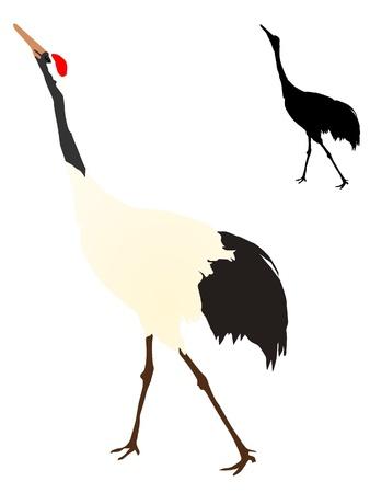 vectors crane Vector