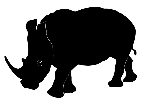 large group of animals: Vector illustration of a rhinoceros Illustration