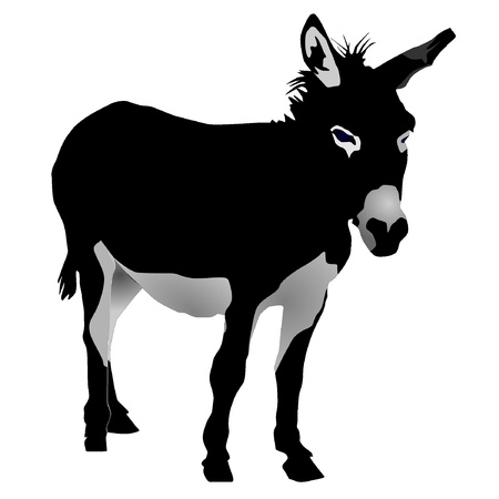 donkey: vectors donkey