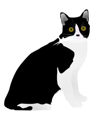 vector black cat Stock Vector - 11897522