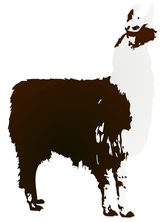 picchu: Vector image Llama Illustration