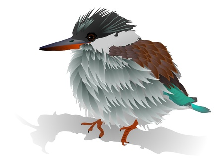 Vector image of a small bird Illustration