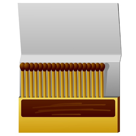 fire wood: Box of matches. vector