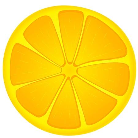 orange peel clove: Vector immagine fette di arancia Vettoriali