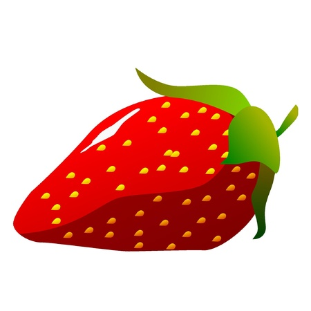 Strawberries. vector  Stock Vector - 11942601