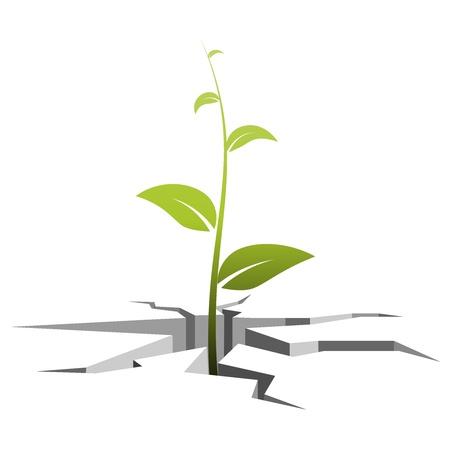 erdboden: Vector Illustration eines Keims, w�chst die aus Rissen im Boden