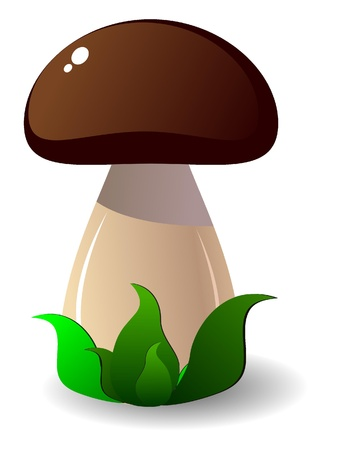 mushroom cartoon: Cepe. vector
