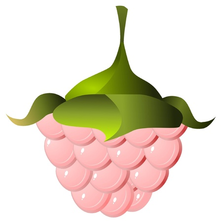image of raspberries  Stock Vector - 11992310