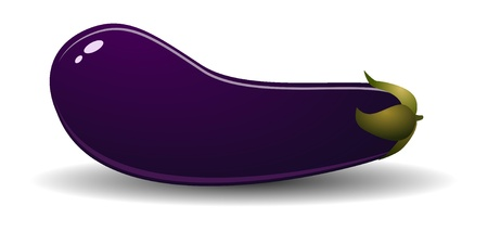 Ripe eggplant. Stock Vector - 11992307