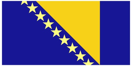 herzegovina: Vector illustration of the flag of Bosnia and Herzegovina Illustration