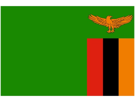 zambia: Vector illustration of the flag of Zambia