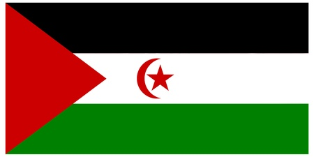 Vector illustration of the flag of Western Sahara   Vector