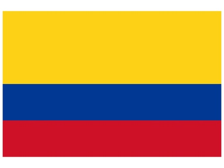illustration of the flag of  Colombia  Vector